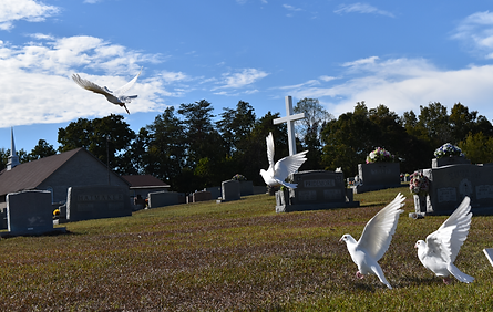 memorial doves at grave site
