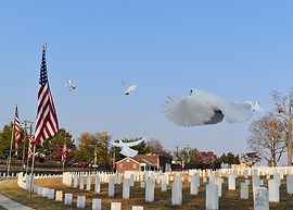 vetrans memorial doves