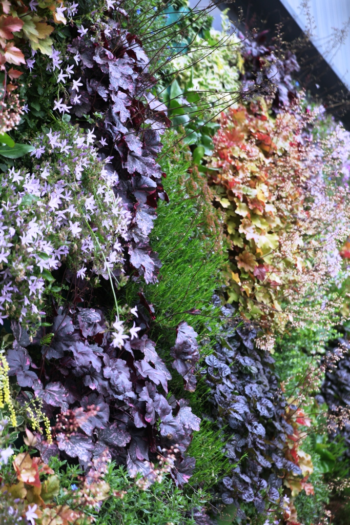Vertical Gardens Make Us Feel Better