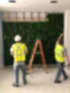 Installing a Moss Wall