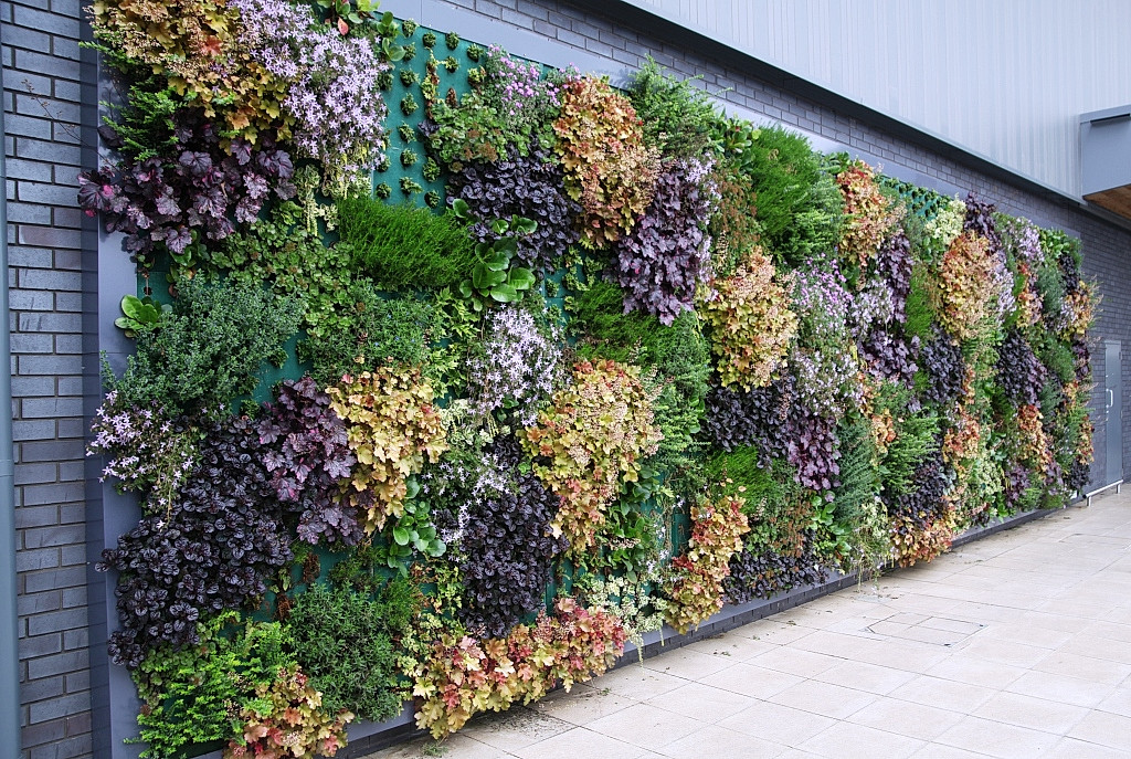 Living Walls Outside
