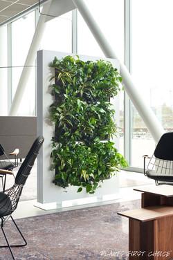Vertical Gardens Reduce Noise!
