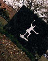 muro_ingles-01.jpg