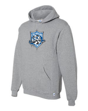 RUSSELL DRI POWER HOODIE GRY with Ice Badge