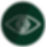 Vision%2520Icon_edited_edited.png
