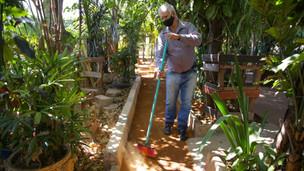 Morador de Ceilândia transforma área em uma pequena floresta urbana