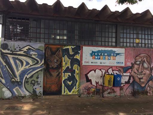 Coluna 061: ONG de Ceilândia promove o bem-estar social desde 2007