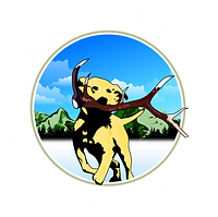 Summit Antler Chews Logo