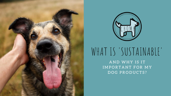What Does 'Sustainable' Mean, and why is it important For My Dog Products?