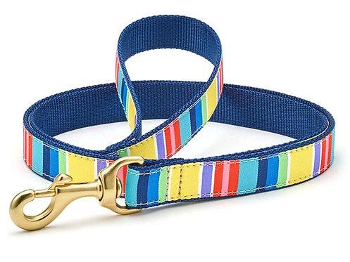 Colorful Stripes Lead