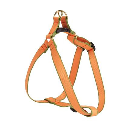 Tangerine and Pine Bamboo Harness