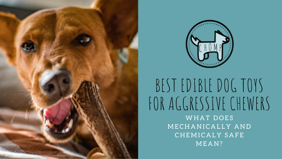 Best Edible Dog Toys For Aggressive Chewers