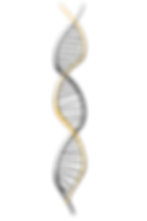 dna-1500067_1920.png