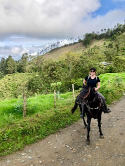 colombia-website-photo-horse-portrait.jp
