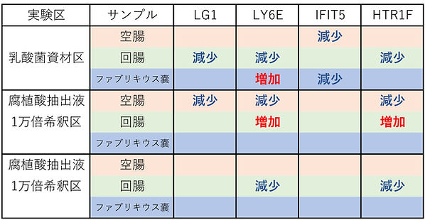 佐賀大学遺伝子相対発現量まとめ表.jpg