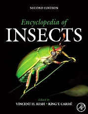 encycopedia of insects.jpg
