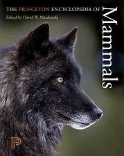 Princeton Encyclopedia of Mammals.jpg