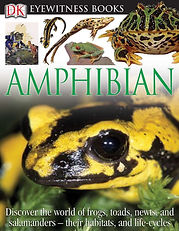 dk eyewitness amphibian.jpg