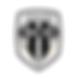 Show football freestyle au stade Raymond Kopa d'Angers sur le terrain et les salons pour les évènements entreprise, les soirées partenaires et matchs de ligue 1. Animation avec démonstrations et show spectacle assurés par Corentin Baron freestyler professionnel champion de freestyle socer