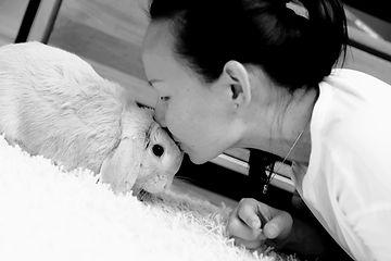 lin bunny.jpg