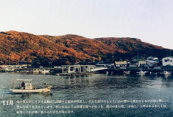 Teshima card.JPG