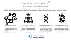 Precision Analgeiscs Ai