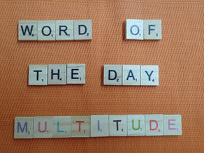 Word of the Day - multitude