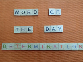 Word of the Day – Determination