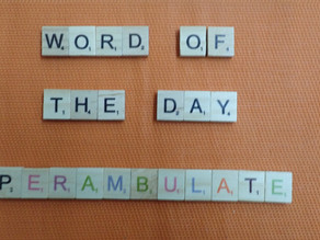 Word of the Day – Perambulate