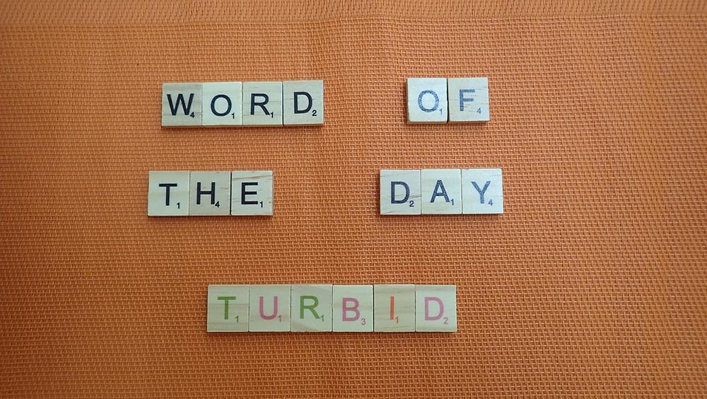 How to Pronounce Turbid