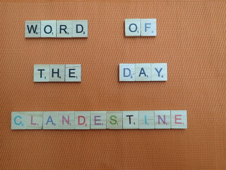 Word of the Day - Clandestine
