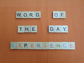 Word of the Day – experience