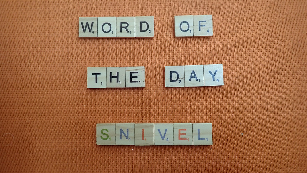 How to Pronounce - snivel