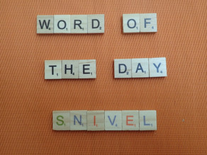 Word of the Day - snivel