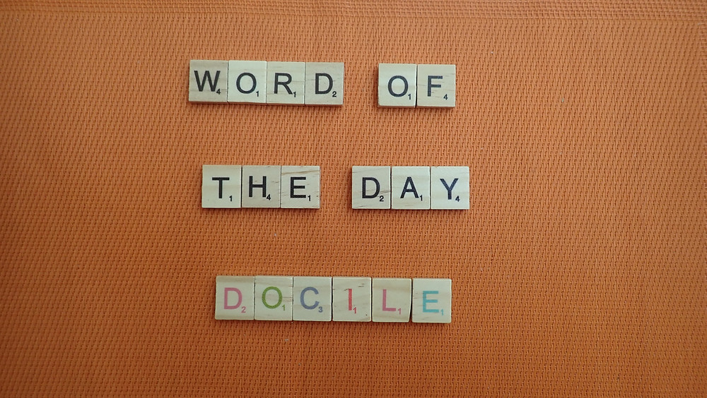 How to Pronounce - Docile