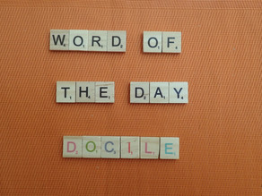 Word of the Day - Docile