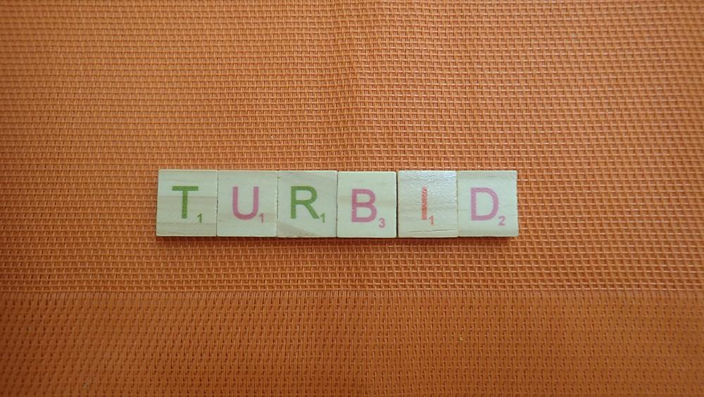 Word of the Day - Turbid