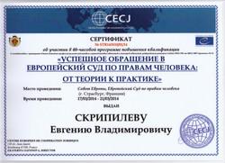 Скрипилев, адвокат, защита в суде, ю