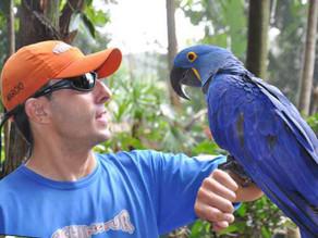 Bird Land - Rio Quente Resorts - Rio Quente - Goiás