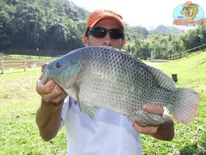 Pesqueiro Kero Peixe – Uma boa opção de pesca a 40km da capital paulista