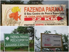 Fazenda Paraná – Pescaria muito divertida com os amigos de SP