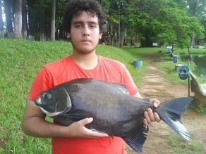 Pesqueiro Santa Tereza – Diversão garantida com grandes peixes em Indaiatuba