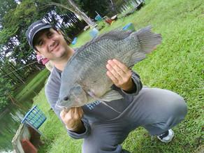 Pesqueiro Santa Tereza – Mais uma super pescaria em Indaiatuba