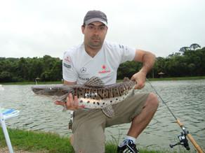 Pesqueiro Taquari – Nosso amigo e leitor Ricardo em uma pescaria com muitos peixes