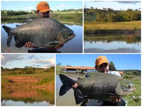 Pesqueiro Tocantins - Muitos peixes neste lindo pesqueiro goiano