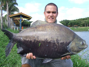 Pesqueiro Boitupesca – A Multiplicação dos Peixes capturados com Pão