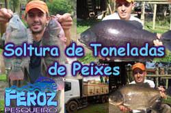 Pesqueiro Feroz – Veja a soltura de 3,5 toneladas de peixes no lago esportivo