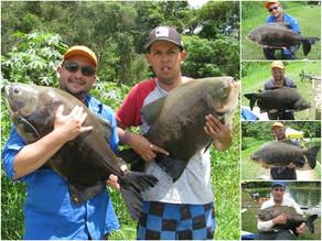 Pesqueiro Taquari – A garantia de grandes redondos na ponta da linha