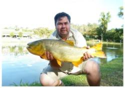 Pesqueiro Panserini - Um ótimo local para seu fim de semana