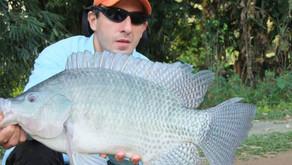 Pesqueiro Ranchão do Peixe – Grandes Tilápias e muitos peies fisgados neste inverno